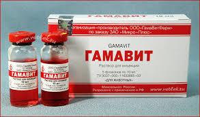 Гаммавит форте 10 мл Микро-плюс - ZooVet - ветеринарные препараты и зоотовары по самим низким ценам в Украине. в Виннице