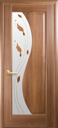 Межкомнатные двери Новый Стиль Эскада стекло с рисунком, фото 2