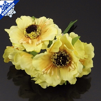 Букет из 6 цветков (Код: cvety-Buk-008-3)