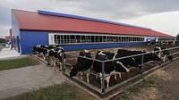 """Строительство молочно-овцеводческой фермы """"под ключ"""""""