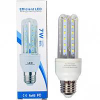 Лампа LED 7  W прозрачная, холодный (арт.LET7Wc)