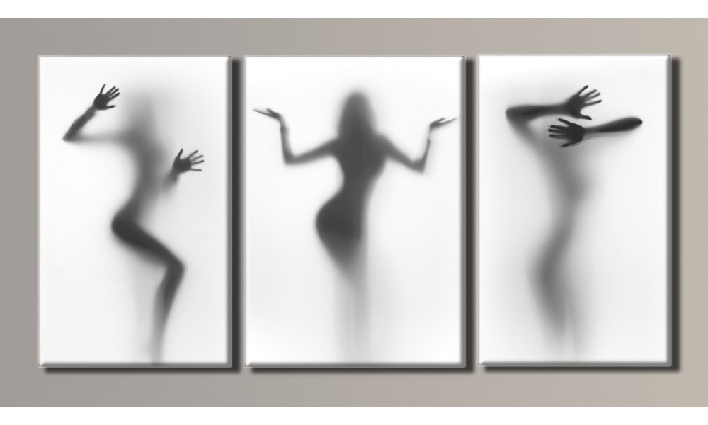 "Модульная картина на холсте ""Женские силуэты 2"""