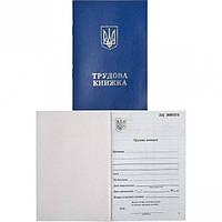 Трудовая книжка с голограммой (арт.TK/200)