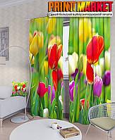 Фотошторы тюльпановая клумба