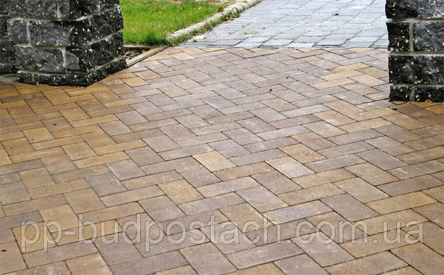 Тротуарна плитка Цегла (200х100) Золотий мандарин