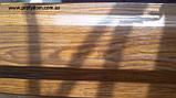 Штакетник металлический, евроштакетник, 0.45 мм, Printech Корея, Мультиглосс (MultiGloss), Одесса, фото 4