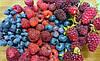 Які ягоди найкраще підходять для випічки?