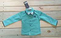 Рубашка на мальчика с бабочкой мятная, производство Турция на возраст 1-4 года (86 см, 92 см, 98 см, 104 см)