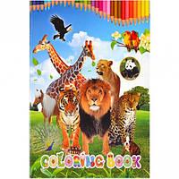 Раскраска А5 с наклейками «Животные» (арт.GDC-000)