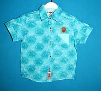 Рубашки wxn 4867.0 для мальчиков 1-4 года
