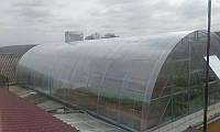 ТЕПЛИЦА ИЗ ПОЛИКАРБОНАТА 8х10х3.5 м., фото 1