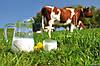Автоматизация линии пастеризации молока
