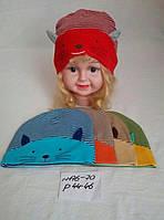 Детская трикотажная шапка для девочки мордочка кошечки с ушками р.44-46
