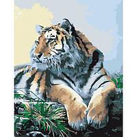 """Акриловий живопис за номерами """"Гордий тигр"""" полотно 40*50 см без коробки ТМ Ідейка"""