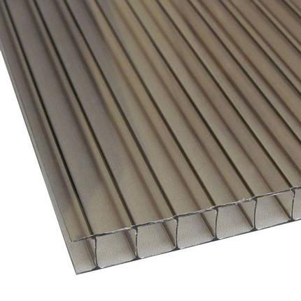 Бронза сотовый поликарбонат 6мм SOTON-STANDART 2.1*12м , фото 2