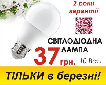 LED лампы по СУПЕР ЦЕНЕ!