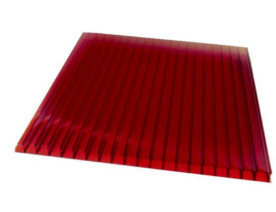ГРАНАТ сотовый поликарбонат 4мм SOTON-ЭКОНОМ 2.1*12м , фото 2
