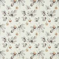 Ткань для штор Fig Harvest Sanderson