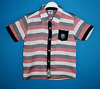 Рубашки wxn 4927.0 для мальчиков 5-8 лет