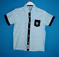 Рубашки wxn 4928.0 для мальчиков 5-8 лет