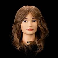 Учебная голова с натуральным волосом, длина 35-40 см, цвет золото