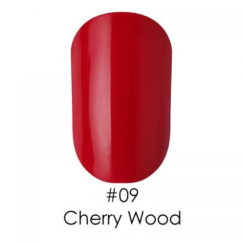 Гель лак для ногтей Naomi №009 темный красный , 6 мл