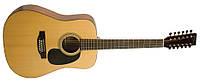 Акустическая 12 стр гитара RECORDING KING  RD06 12