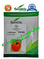 Томат Таня F1 / Tanya F1, 1000 семян Seminis (Голландия)