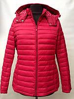 Весенне-осенние женские куртки баталы