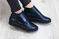 Женские  кожаные ботинки на липучке синего цвета