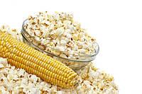 Попкорн семена кукурузы (СортСемОвощ, Украина)