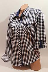 Женские рубашки в клетку с карманами оптом VSA белый+синий мелкая