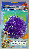 Научные игры: Волшебные кристаллы Ледниковый период Фиолетовый 12177008Р Ранок Украина