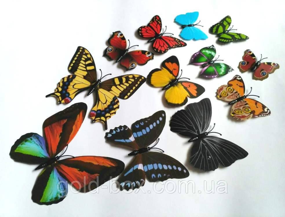 Декоративні метелики на магніті і липучці 12шт асорті