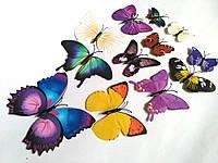 Бабочки на стену магните и липучке 12шт ассорти