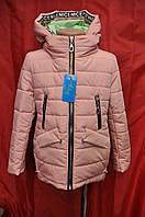 Куртка демисезонная для девочки с удлиненной спинкой и съемным капюшоном р.122-140