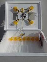 Инкубатор Теплуша на 63 яйца автомат