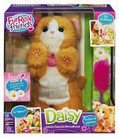 Веселый интерактивный котенок Дейзи FurReal friends