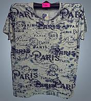 Футболка мужская с надписью Paris