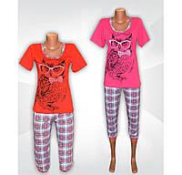 Пижама женская летняя, футболка и бриджи, хлопок, р.р.42-56