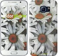 "Чехол на Samsung Galaxy S6 G920 Ромашки v2 ""2699c-80"""