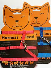 Шлея Dog Extreme нейлон для котів з держателем шир.10мм,A:20-30 см, B:25-40 см, довж.110 див. червоний/синій/чорний