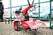 Мотоблок дизельний WEIMA WM1100A-6, КМ (безкоштовна доставка), фото 2