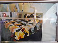 """Комплект постельного белья """"Restline"""" 3D, микросатин, евростандарт, цветы"""