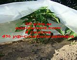 Агроволокно р-30g 1,6*500м AGREEN 4сезона белое Итальянское качество, фото 7