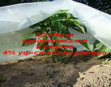 Агроволокно р-30g 6.35*250м AGREEN 4сезона біле Італійське якість, фото 8