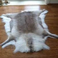 Шкура оленя финского