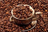 Виды кофе: Арабика и Робуста.