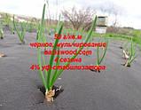 Агроволокно p-50g 1.6*100м черное AGREEN 4сезона Итальянское качество, фото 5