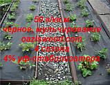 Агроволокно p-50g 1.6*100м черное AGREEN 4сезона Итальянское качество, фото 6